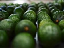 Nederland importeerde nog nooit zo veel avocado's